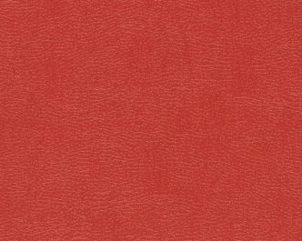 11053 Indian Red