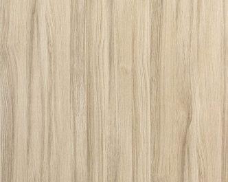 15261 Sessile Oak