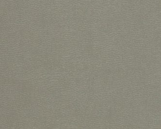 11072 Gothic Grey
