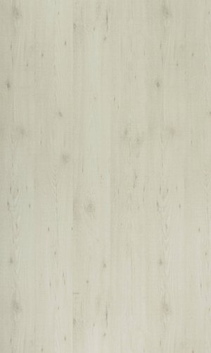Austrain Pine-15198