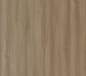 Caucasian Elm Dark-elm