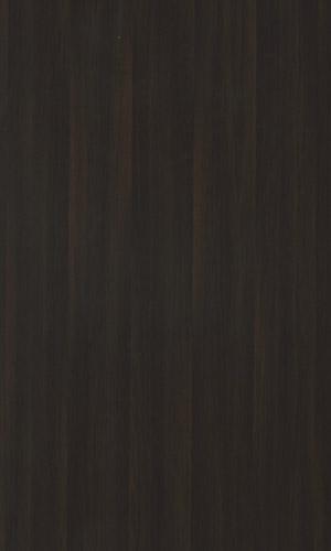 Dark Wood-15171
