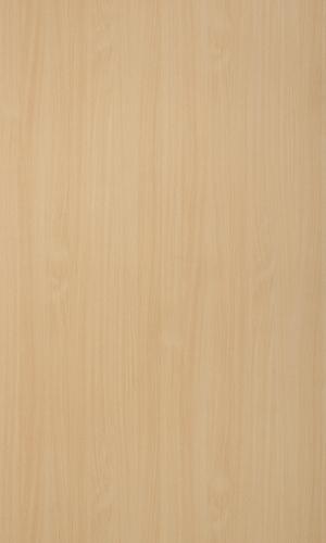 Intal Beech-15083