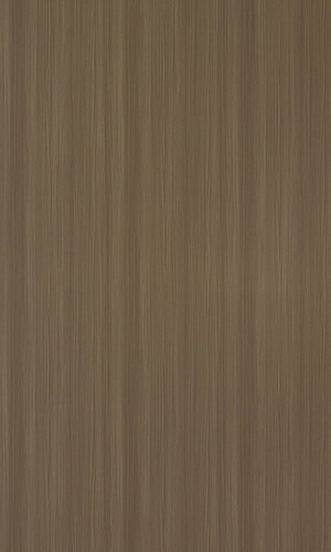 Mocha Pinus