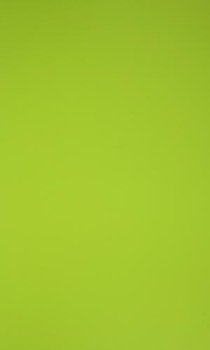 11037-parrot-green