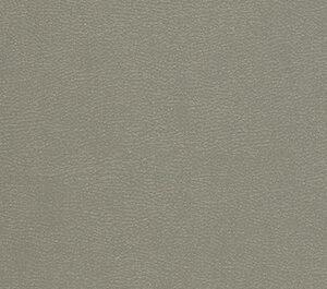 11072-gothic-grey